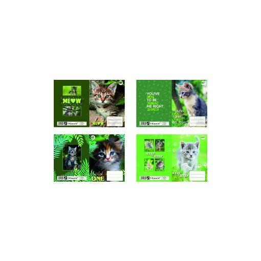 T-Creativ füzetborító A/5 Cat 10db